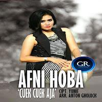 Lirik Lagu Afni Hoba - Cuek Cuek Aja