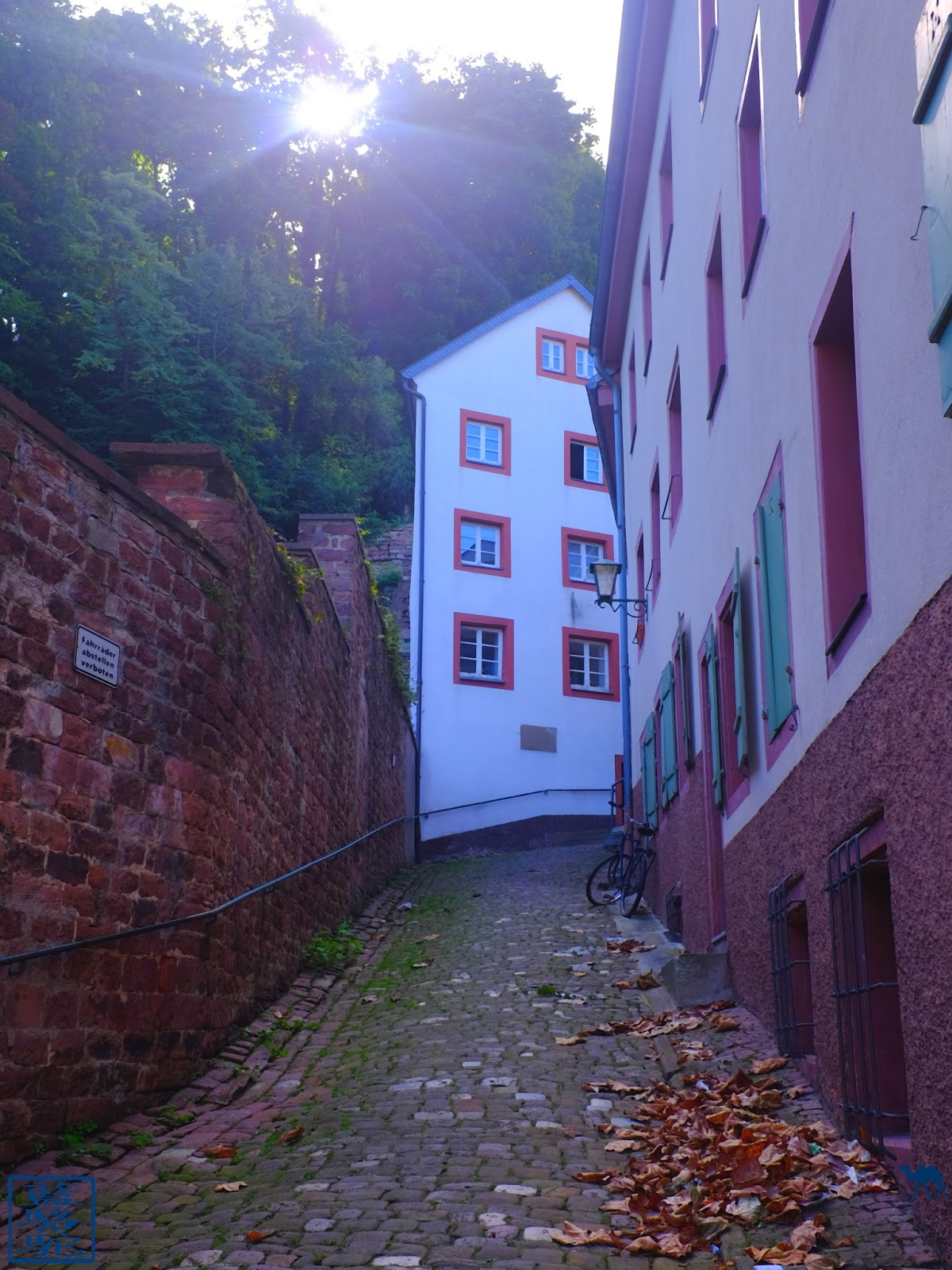 Le Chameau Bleu - Blog Voyage Heildeberg Allemagne - Ruelle de la vieille ville - Heidelberg