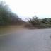 ΑΓΡΙΝΙΟ!!!Πήγε να μαζέψει ελιές  στο χωράφι του…ΚΑΙ ΕΠΑΘΕ ΣΟΚ ΜΕ ΑΥΤΟ ΠΟΥ είδε...ΦΩΤΟΓΡΑΦΙΕΣ!!!
