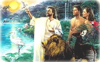 libro el hombre dios y el universo pdf