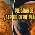 ¿Es Pie grande un extraterrestre?