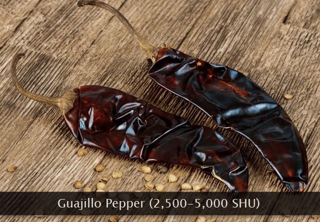 Guajillo chili pepper