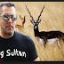 LIVE: काला हिरण शिकार मामले में सलमान खान दोषी करार, सैफ सहित बाकी सभी सितारे बरी