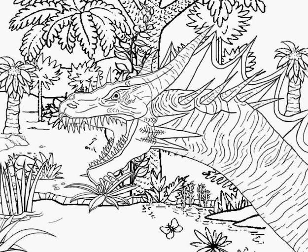 Animal Coloring Page For Older Children Difficult Coloring Pages For Older  Children  Az Coloring Pages