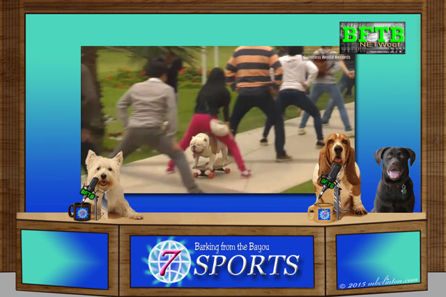 BFTB NETWoof News with Otto the skateboarding dog