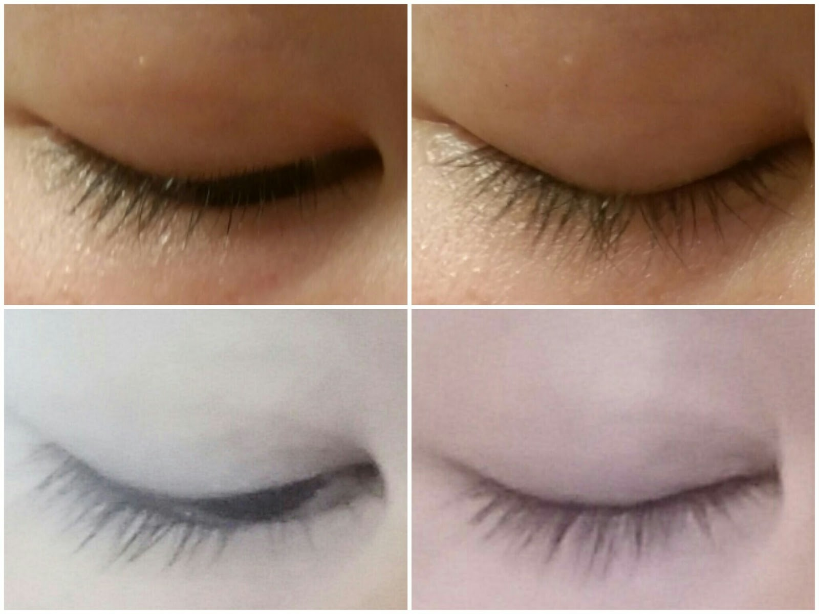 Beauty In Everyday Life Does Castor Oil Work To Grow Your Eyelashes
