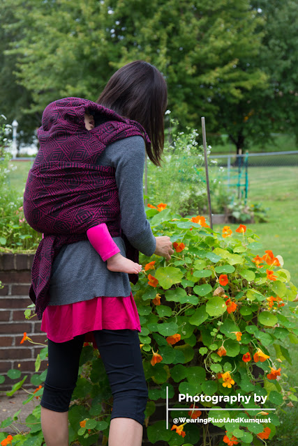 "[Image of a tan skin Asian woman with dark brown hair wearing a sleeping toddler on her back in a magenta and black concentric square patterned meh dai baby carrier. The toddler has on bright magenta leggings. The woman has on a magenta swing top and black capri leggings. They coincidentally super match today. They're outside at a raised garden overflowing with fresh green leaves and orange nasturtium blossoms. The cute little white flowers of cilantro gone to seed are also visible. The woman is looking down picking nasturtium seeds, enjoying the quiet of a sleeping toddler. Bottom right corner in white is a watermark with a ""T"" lying on its side; top text ""Photography by,"" bottom text ""@WearingPluotAndKumquat.""]"