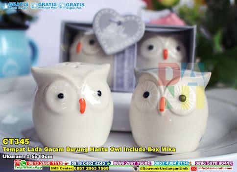 Tempat Lada Garam Burung Hantu Owl Include Box Mika