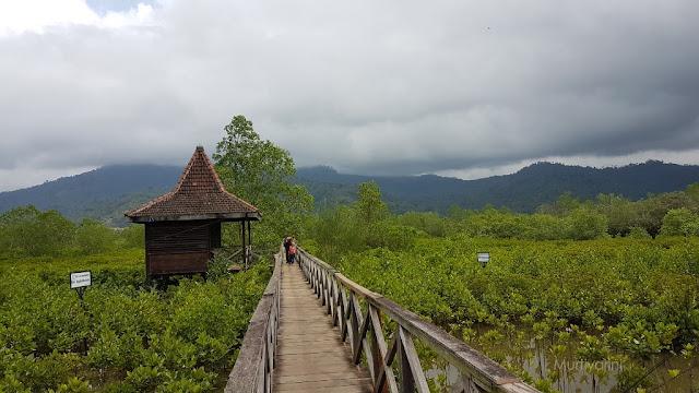 Ekowisata Mangrove, Pantai Cengkrong Trenggalek