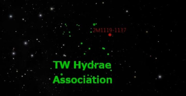 2MASS J1119-1137 belongs in the youngest group of stars in the solar neighborhood, known collectively as the TW Hydrae association, which contains about two dozen 10 million-year-old stars, all moving together through space. This image is a still shot from a video about these results produced and directed by David Rodriguez, using visualization software Uniview by SCISS and the American Museum of Natural History's Digital Universe data. Credit: David Rodriguez, with contributions from Jacqueline Faherty, Jonathan Gagné, and Stanimir Metchev