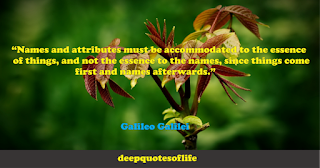 """""""Names and attributes must be accommodated to the essence of things, and not the essence to the names, since things come first and names afterwards.""""  ― Galileo Galilei"""
