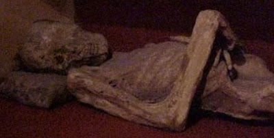 Foto a una momia de Guanajuato con la cabeza inclinada