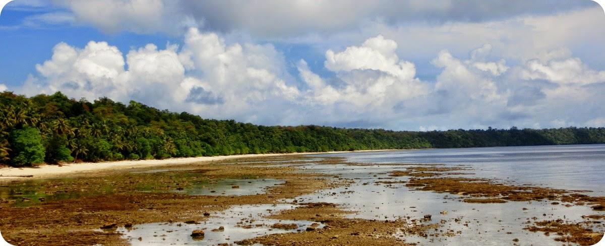 Pulau Kakaban Derawan