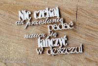 http://scrapkowo.pl/shop,nie-czekaj-az-przestanie-padac-,1445.html