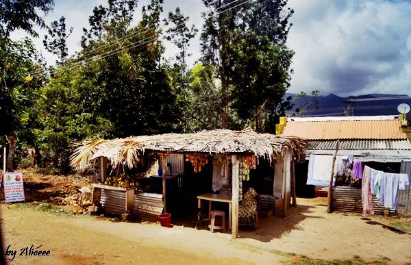 Sudul-Indiei-Peisaje-calatorie