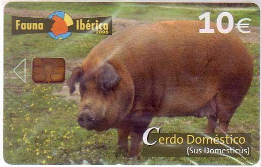 Tarjeta telefónica Cerdo doméstico (Sus domesticus)