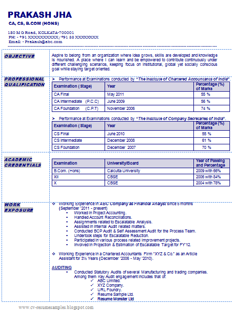 sample accountant resume format in india