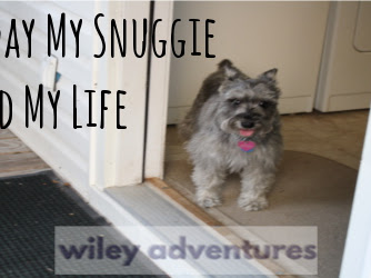 The Day My Snuggie Saved My Life
