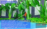 Jasa Perawatan Kolam Renang di Gunung Sindur, Bogor