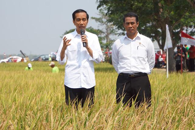 Impor Beras, Pemerintahan Jokowi-JK Dinilai Khianati Petani