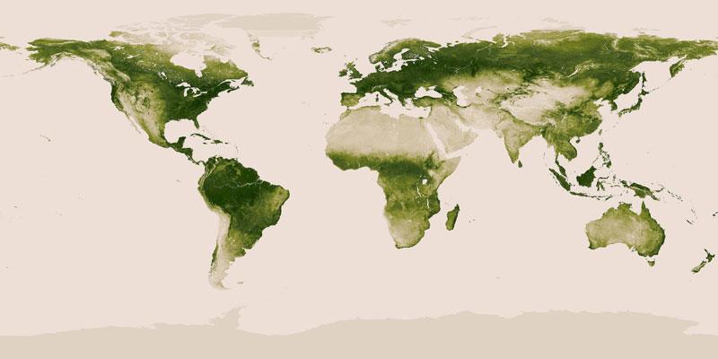 Mapa da Vegetação da Terra