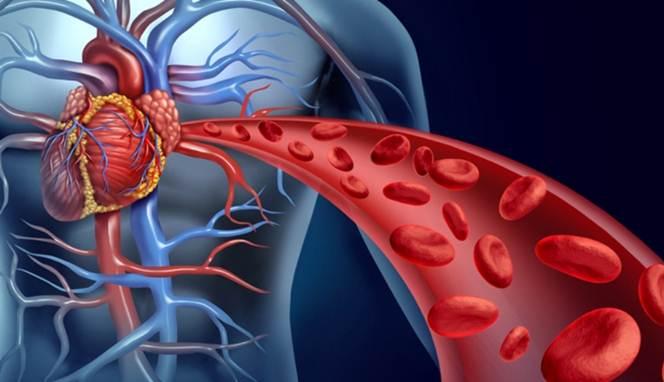 Tanda Sirkulasi darah
