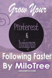 MiloTree for Pinterest Grow