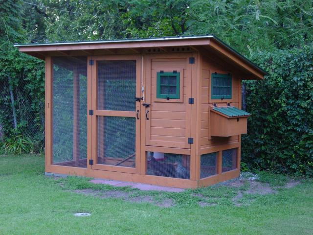 The Blue Between: Dreamin' of Chicken Coops