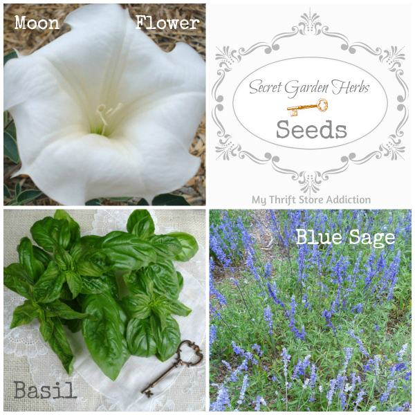 Secret Garden Herbs seeds