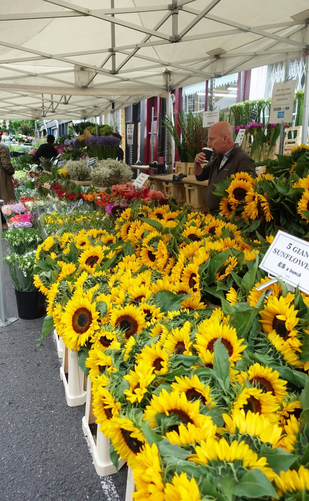 A colourful display of sunflowers at London's Columbia Road flower market