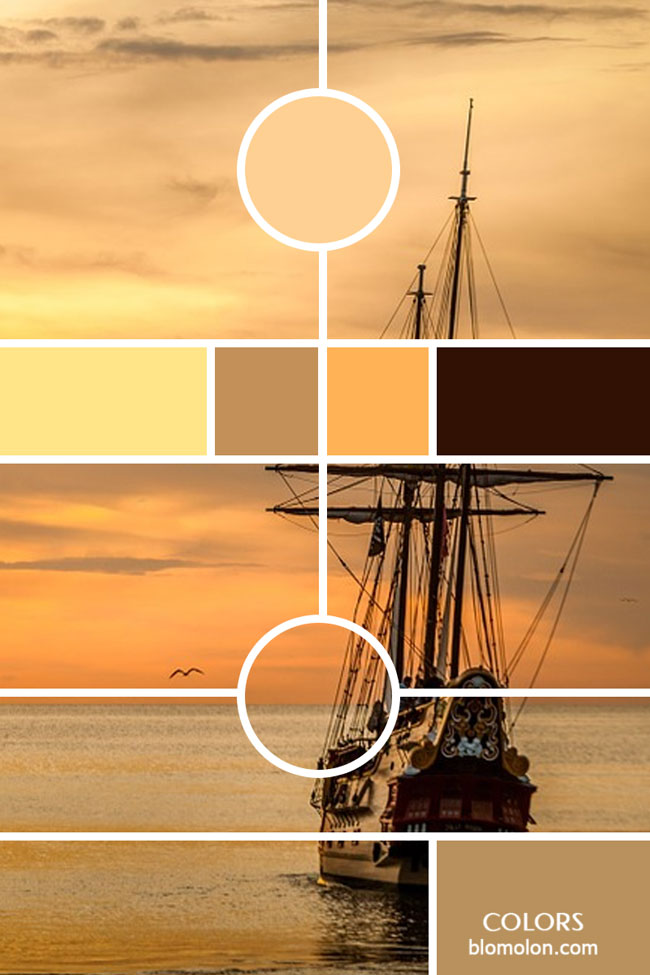 variedad_en_color_moodboards_7
