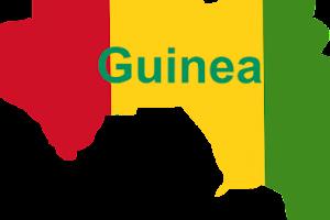 Ulama Saudi dibunuh di pedalaman Guinea usai berdakwah