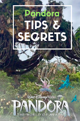 Tips & Secrets to Visiting Pandora at Disney's Animal Kingdom