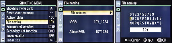 The Nikon Companion: Using Nikon's File Naming and File Number
