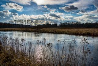 Ökologisch schlechter Zustand bei Flüssen und Seen