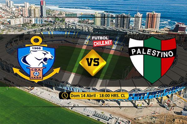PREVIA: Deportes Antofagasta vs Palestino