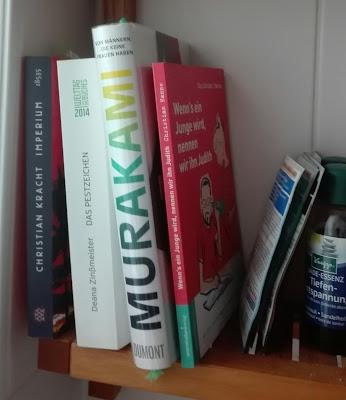 Bücher im Badregal. Neben Hanne stehen Kracht, Murakami und einem Historienroman