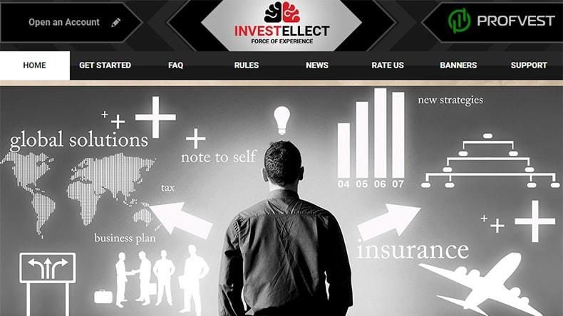 Успехи работы в Investellect