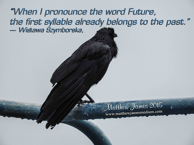 'When I pronounce the word Future, the first syllable already belongs to the past' - Wislawa Szymborska