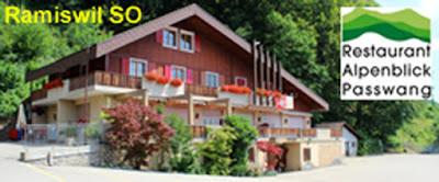 https://www.alpenblick-passwang.ch/