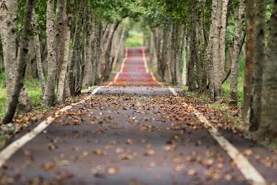 सपने में सड़क देखना sapne mai sadak dekhna