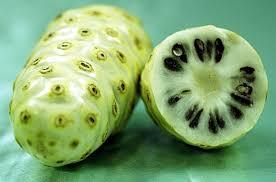 Bahan yang Digunakan Untuk Membuat Obat Kolesterol Alami JAMKHO
