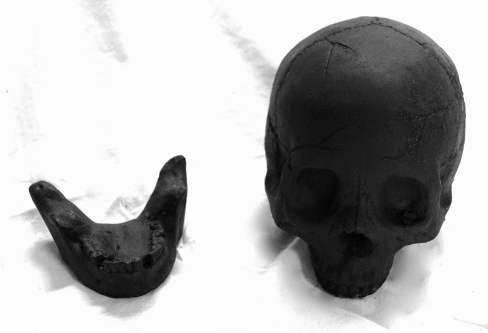 Formation Creation Inc Skulls Skull Sets