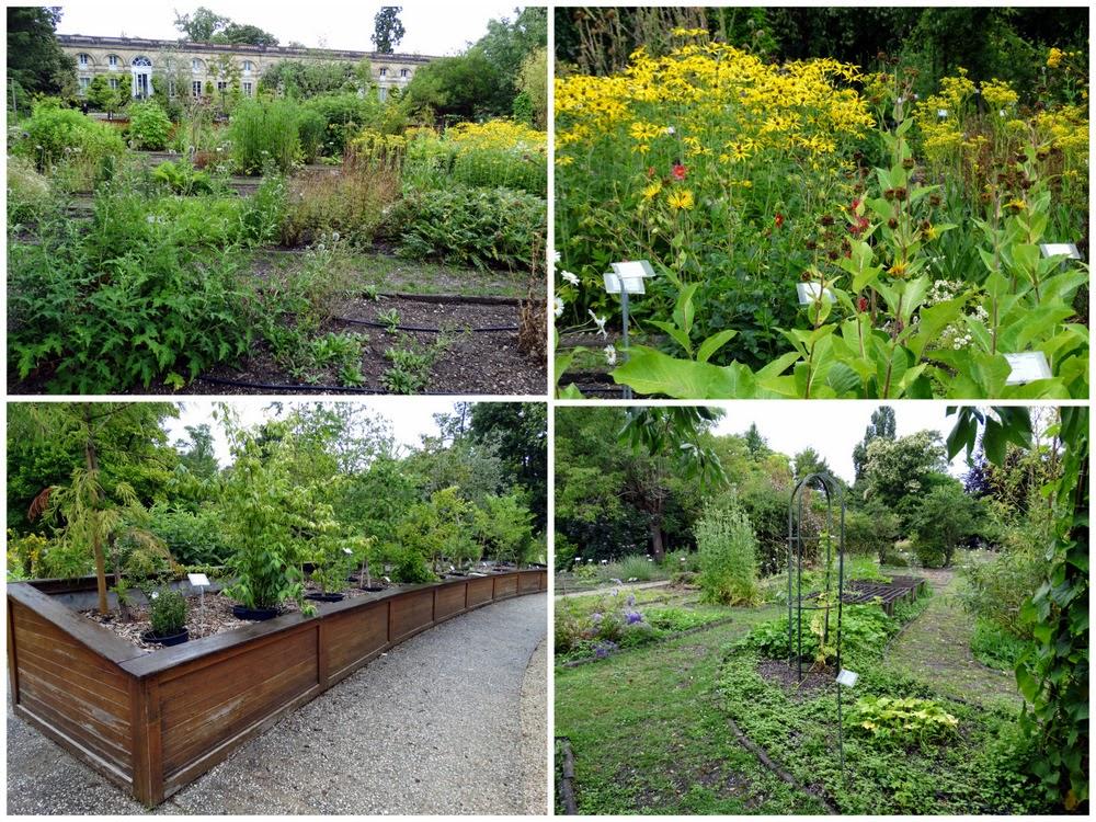 Les jardins botaniques de bordeaux 1 2 au c ur du for Jardin botanique bordeaux