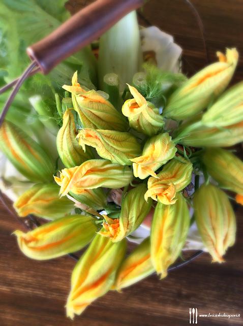 fiori di zucca maschi