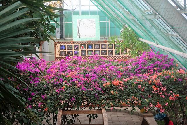 北海道 函館熱帯植物園