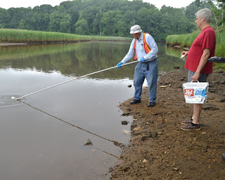 Clean Ocean Action: Navesink River Citizen Water Quality Monitoring