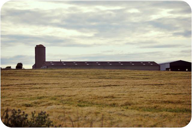 Farm - Inverugie Aberdeenshire
