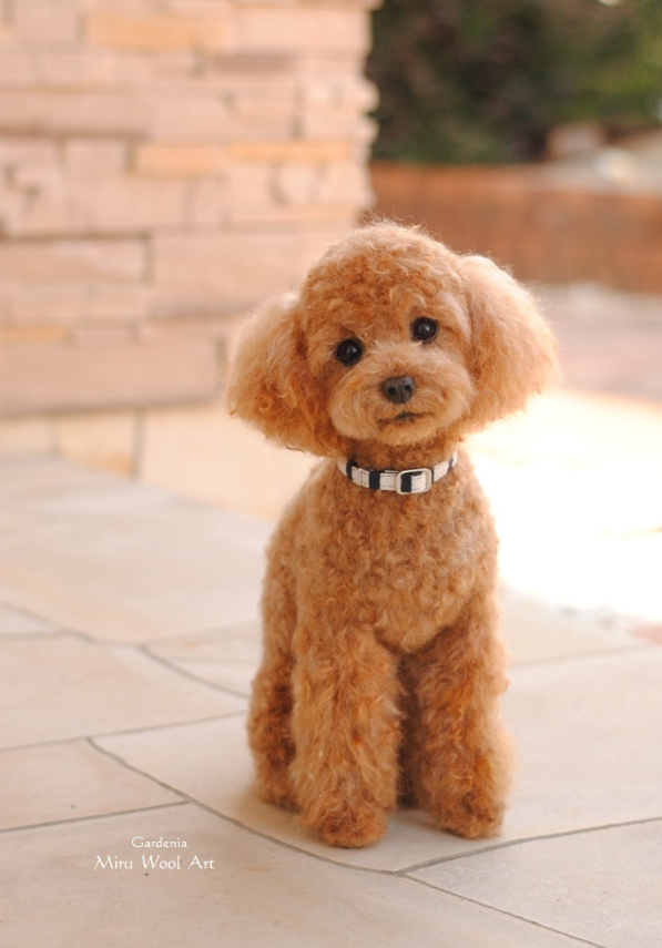 10-Miniature-Poodle-Miru-Felting-Wool-Animals-www-designstack-co