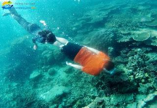 menyusuri bawah laut karimun jawa